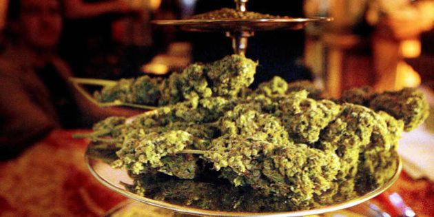 AMSTERDAM, NETHERLANDS: This November 2003 file picture shows cannabis at the yearly 'High Times Cannabis...
