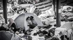 O amor nos tempos de refúgio