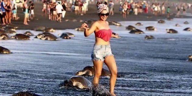 Turistas arruínam desova de tartarugas na Costa Rica para tirar