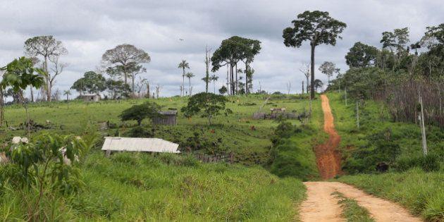 Deputados querem reduzir áreas protegidas no