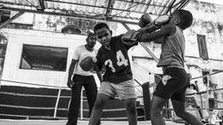 Como Cuba se tornou um celeiro de boxeadores