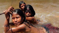 Índios brasileiros têm genes próximos aos dos aborígenes