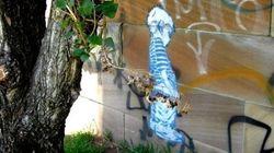 ASSISTA: São Francisco adota a MELHOR tática para combater o xixi na