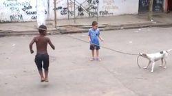ASSISTA: Cadela Bolinha se diverte batendo corda para