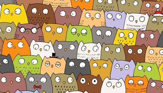 Um gato está escondido entre as corujas deste desenho. Você consegue