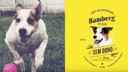 Cachorrinhos estrelam campanha de adoção em rótulo de cerveja e anúncio