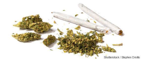 Fumar maconha todos os dias pode deixar você mais pobre que seus pais, aponta