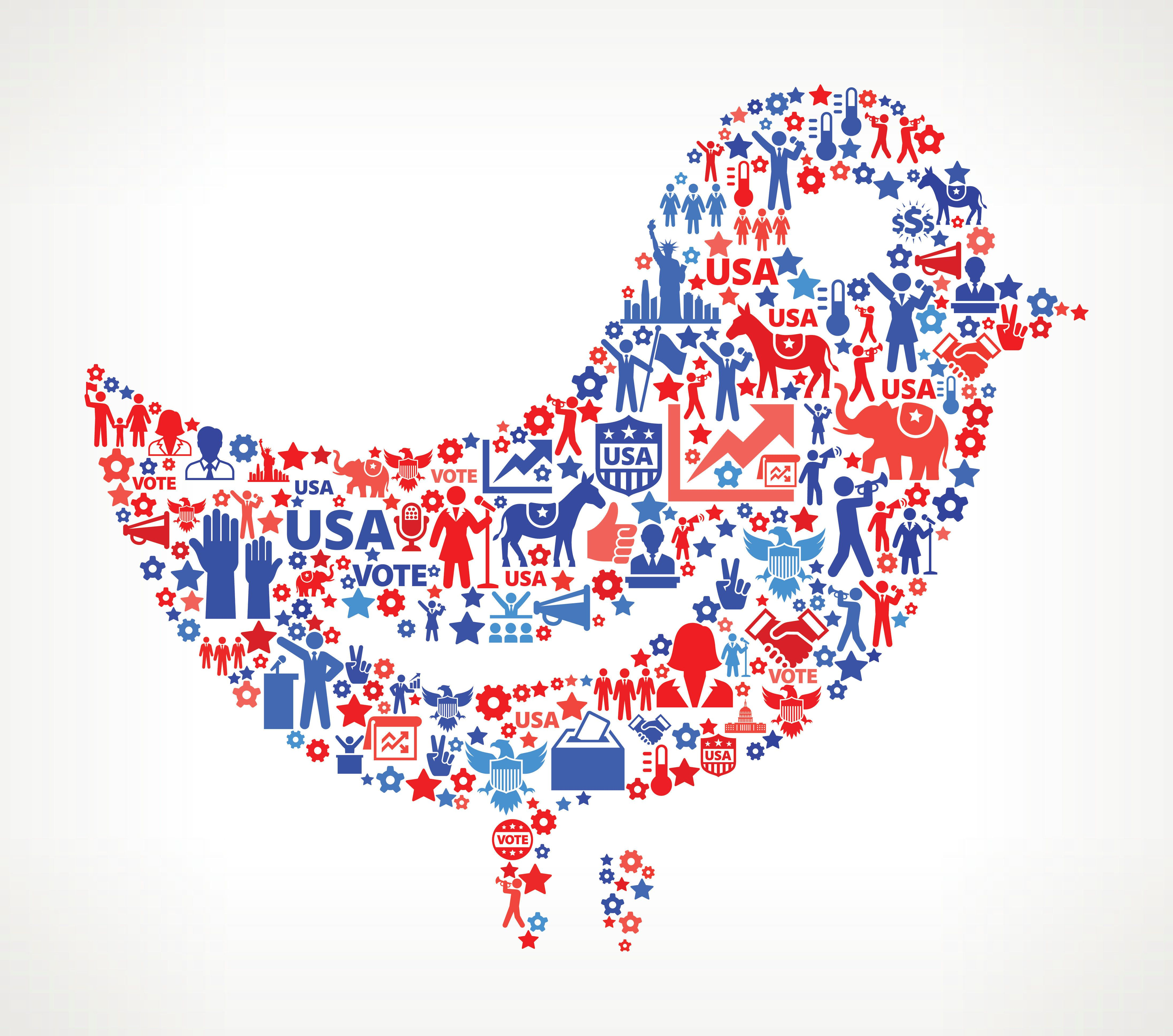 Bird Vote and Elections USA Patriotic Icon Pattern. This 100% vector composition features red and blue vote and elections icon pattern. The icons vary in size and include such election iconography as voting, candidates, leadership, voting ballots, republican and democratic symbols and people participating in the voting process.