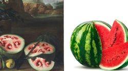 Nossa melancia não tem absolutamente nada a ver com a de