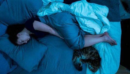 Estas imagens ilustram perfeitamente o jeito como você dorme todas as