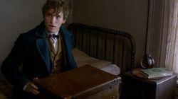Saudades de Dumbledore? Então você vai AMAR o trailer de 'Animais Fantásticos e Onde