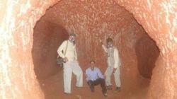 Estes enormes túneis são obra de PREGUIÇAS GIGANTES da