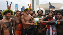 Com mais de 300 mortes, líder Guarani-Kaiowá denuncia 'genocídio indígena' em
