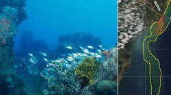 ASSISTA: Lama da Samarco avança e ameaça reserva marinha em