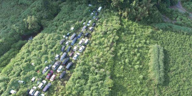 Fotógrafo Arkadiusz Podniesinski registra avanço da natureza em Fukushima