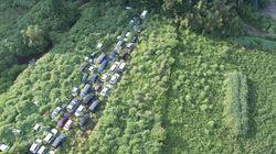 Fotógrafo registra avanço da natureza em Fukushima após acidente