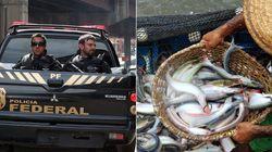 Secretário-executivo da Pesca é preso em operação da