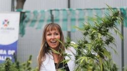 Chile sai na frente! País tem 6,9 mil plantas de maconha para o uso