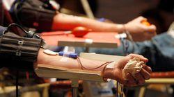 Defensoria quer liberação da doação de sangue por gays no Brasil em até 30
