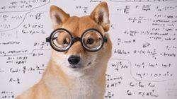 Veja como calcular o QI do seu