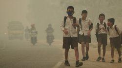 Poluição do ar pode estar ligada a problemas de saúde mental em