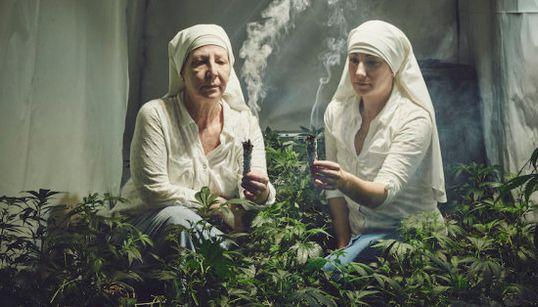Estas 'freiras' que plantam e vendem maconha na Califórnia são um