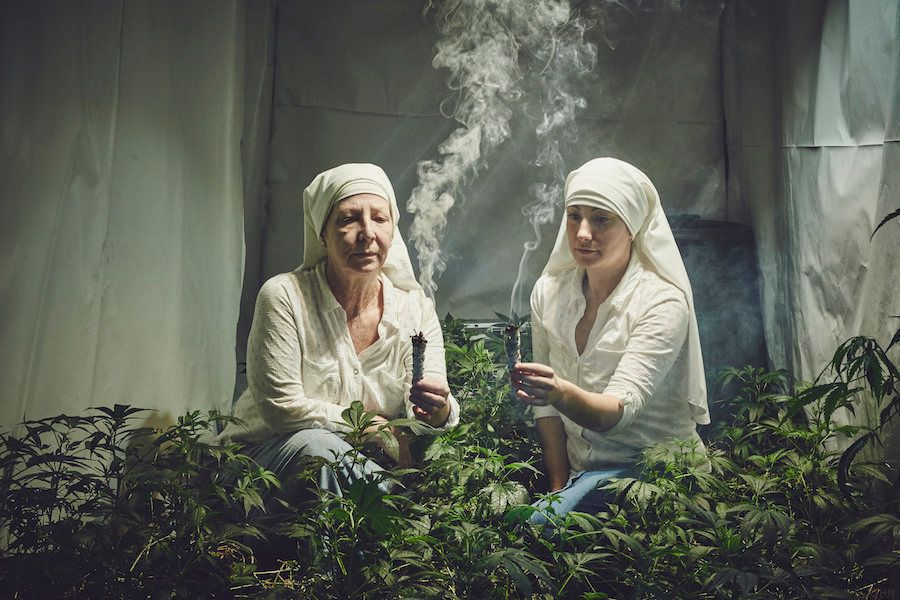 Estas 'freiras' que plantam e comercializam maconha na Califórnia são um