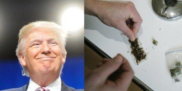 Pesquisa aponta que maioria dos eleitores republicanos apoiam legalização da