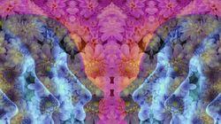 Cogumelos alucinógenos, LSD e MDMA ajudam no tratamento de doenças