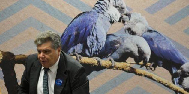 De volta para o futuro: Ministro do Meio Ambiente pede para reinstalar o