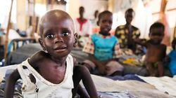 Milhões passam fome enquanto bilhões de toneladas de comida vão para o