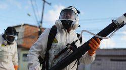 EUA podem testar vacina contra Zika até final do