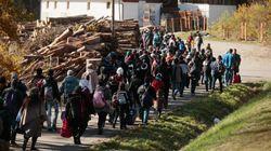 ASSISTA: Multidão de refugiados atravessa fazenda na