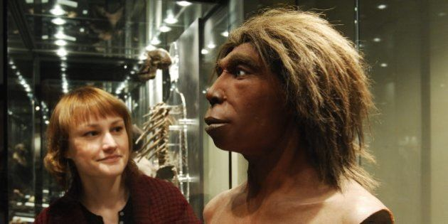 (GERMANY OUT) Germany - Berlin - : visitor is looking at the head of a Neanderthal man - (Photo by Lambert/ullstein...