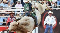 Bancada Ruralista impede proibição dos rodeios ao final da CPI dos Maus-Tratos a
