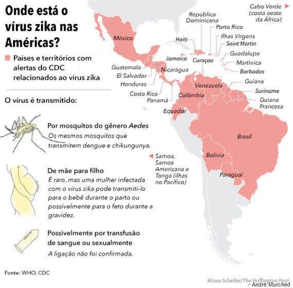 9 perguntas importantes sobre o vírus zika