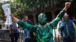 México aprova uso de maconha para fins recreativos e abre espaço para