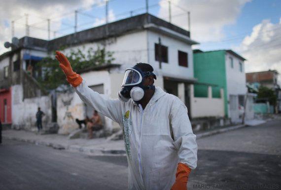 O vírus zika tem pelo menos 50 anos. Saiba por que ele só começou a se espalhar