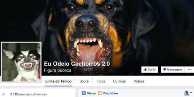 Páginas que pregam o ódio aos cachorros e gatos causam revolta, mas seguem ativas no