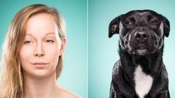 Donos imitam seus cachorros em um ensaio fotográfico MUITO