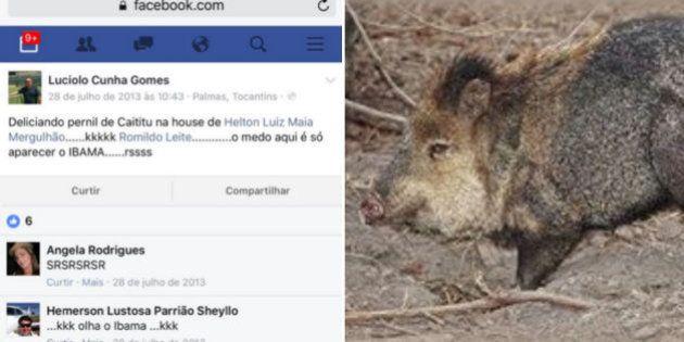 Nomeado por Sarney Filho para Ibama já comemorou comer animal silvestre, denuncia
