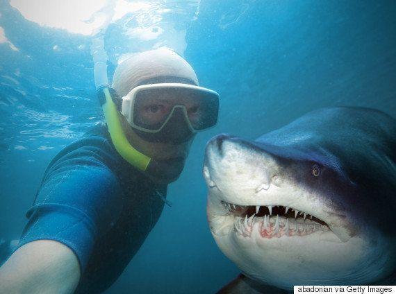 Cientistas acabam de mostrar que ficar fotografando as experiências é legal,