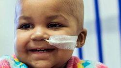 Injeção de células geneticamente modificadas cura câncer em