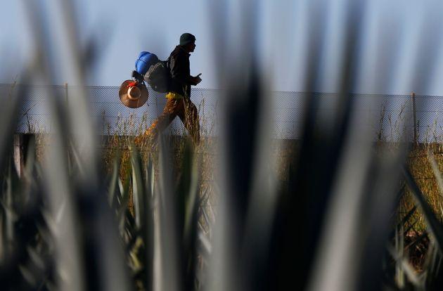 Φρικαλέα μάχη συμμοριών με απανθρακωμένα πτώματα κοντά στα σύνορα Μεξικού-