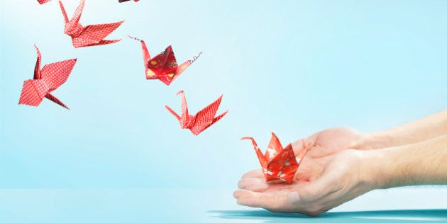 red, cranes, origami, floral, checked, blue, hands, hand, finger, fingers, flying away, studio, studio