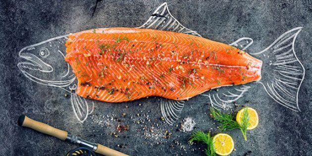 10 razões para colocar o salmão no seu cardápio hoje