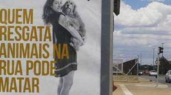 'Gente boa também mata': A polêmica campanha do Ministério dos