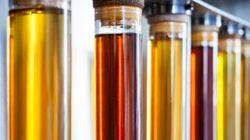 Por que o biodiesel é importante para o clima e para a