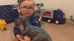 ASSISTA: Você nunca viu um especialista em dinossauros tão fofo quanto