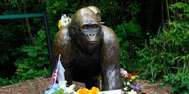 CINCINNATI, OH - JUNE 2: Flowers lay around a bronze statue of a gorilla and her baby outside the Cincinnati...
